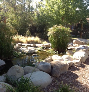 The peaceful surroundings at Camp Reach for the Stars in Ojai, CA