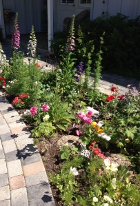 Another shot of my flower garden. It's just too pretty not to share.
