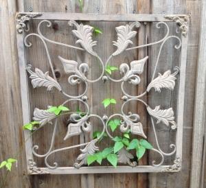 trailing vines