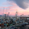 The amazing sunset at the Santa Barbara Harbor where Rene and I had dinner recently.
